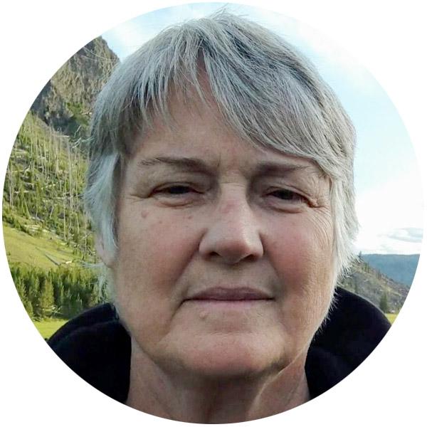 Carol Ann Anderson